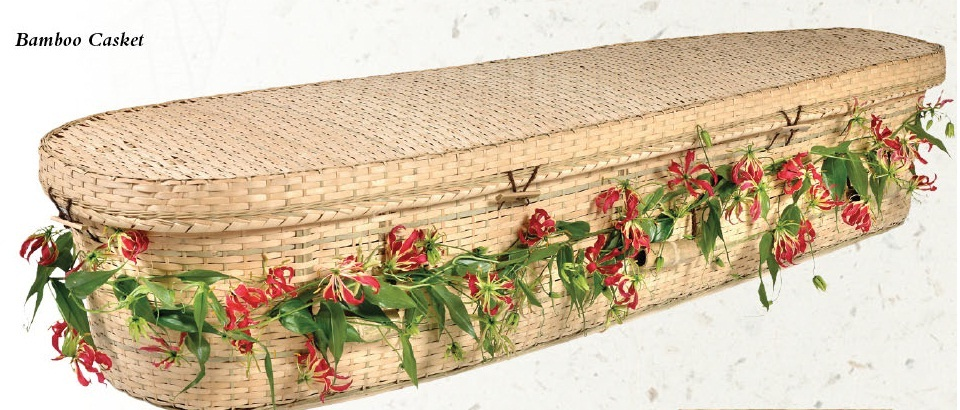 Photo of Bamboo Nature Casket Casket