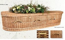 Image of Willow Nature Casket Casket