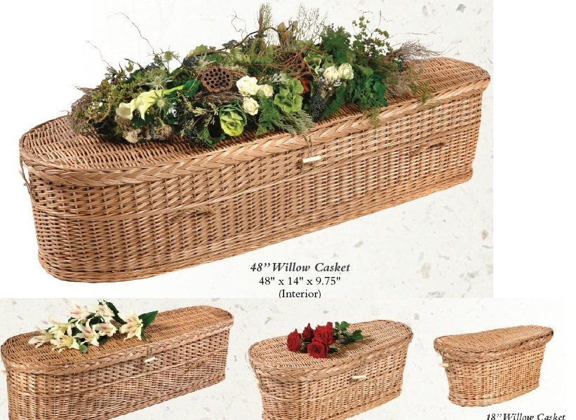 Photo of Willow Infant Nature Casket Casket