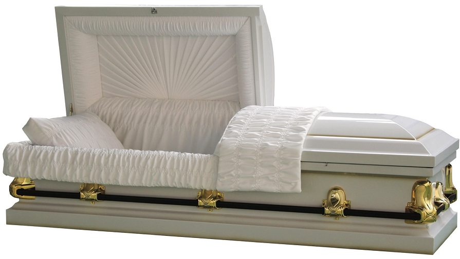 Photo of Galaxy White/Gold Steel Casket Casket