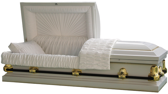 Image of Galaxy WHITE/GOLD Steel Casket Casket